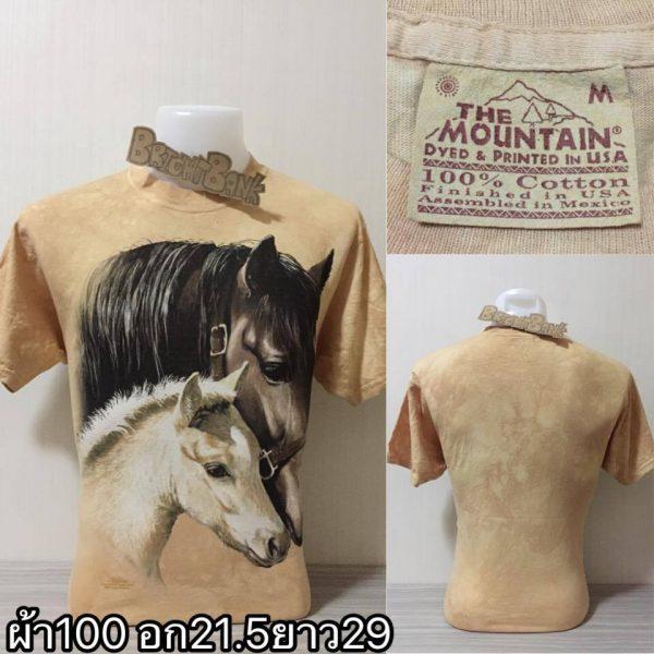 เสื้อยืดมือสอง usa วินเทจ ผ้าบาง ผ้า 50/50